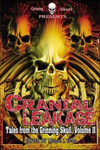 cranial-leakage-cover